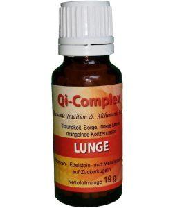 Qi Complex Lunge 250x300 - Die Chemie von Tattoos