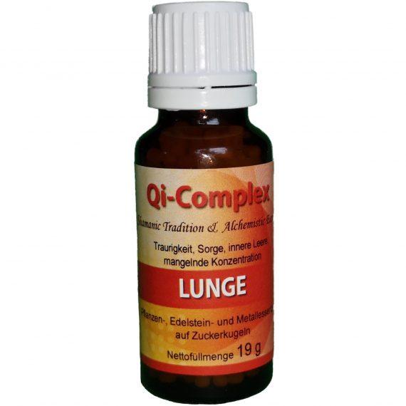 Qi Complex Lunge 570x570 - Qi-Complex Lunge