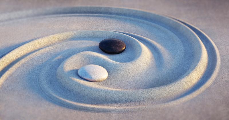 Das Herz Knotenpunkt Körper Geist Seele - Das intelligente Herz