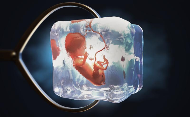 Genmanipulation Embryo - Der Krieg um unsere Gene
