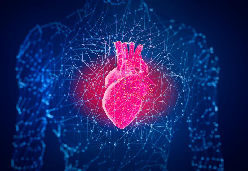 Mega Herz - Der Krieg um unsere Gene