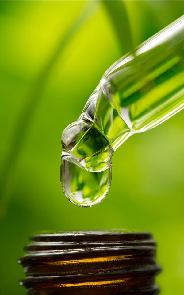 Tinktur 2 - Heilpflanzen - die Chance für eine bessere Gesundheit